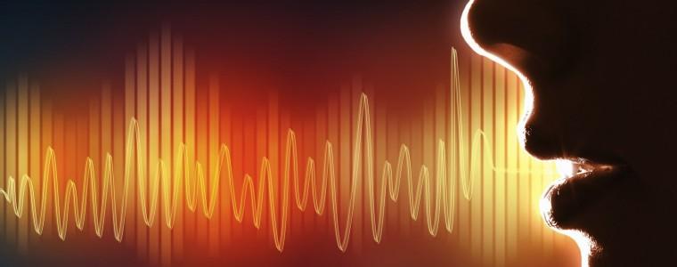 voz y formacion